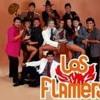 Los Flamers - La Guera Salome - DJ Daniel(102)