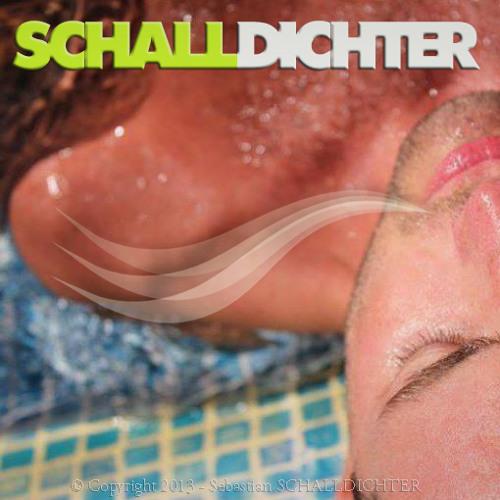 SCHALLDICHTER`S Electronic Soundselection - TECHNO/TECH HOUSE/MINIMAL