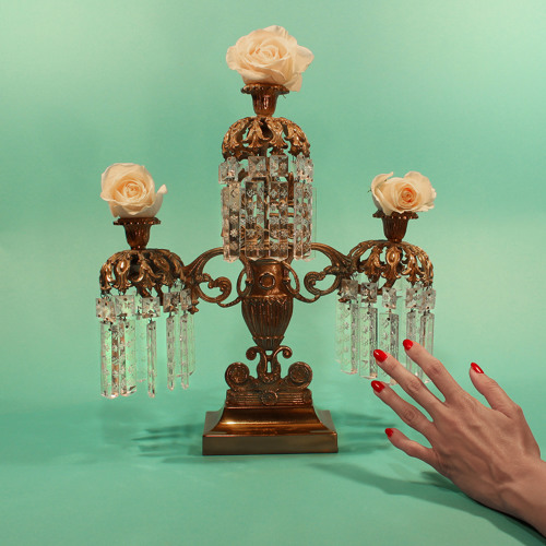Tropic of Cancer - Court of Devotion