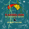 Flashglidin-spooky fellow