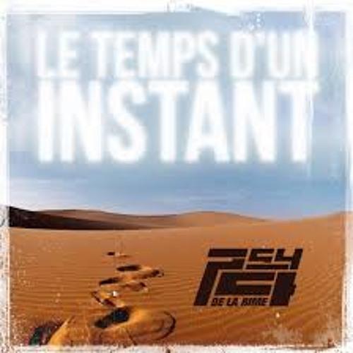 Psy4 De La Rime-Le Temps D'un Instant-Reggae 2013