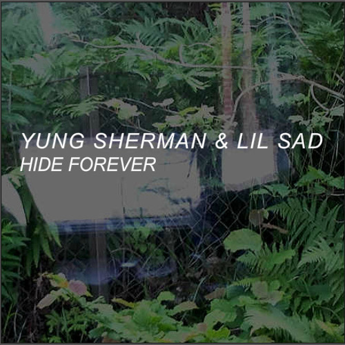 YUNG SHERMAN & LIL SAD - HIDE FOREVER