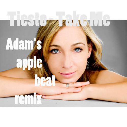 Tiesto - Take Me (Adam's apple beat remix)
