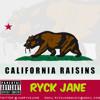 California Raisins (Freestyle)