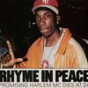 Hood Dreams (Big L- Street Struck Remix) (Re-Mastered)