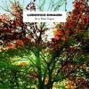 Ludovico Einaudi - Time Lapse (Psychemagik Cosmix)