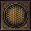 Bring Me The Horizon - Sleepwalking (Acoustic) - This Wild Life x Mapps mp3