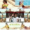 Priyanka Ft Pitbull - Exotic  (Deejay Wasim Dutch Soul Mash)2013