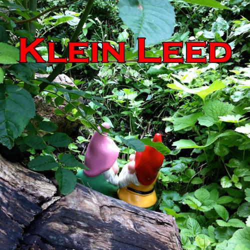 KleinLeedSneezySleepy