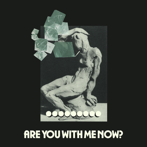 Are You With Me Now? - Cate Le Bon