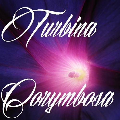 Silyfirst - Turbina Corymbosa