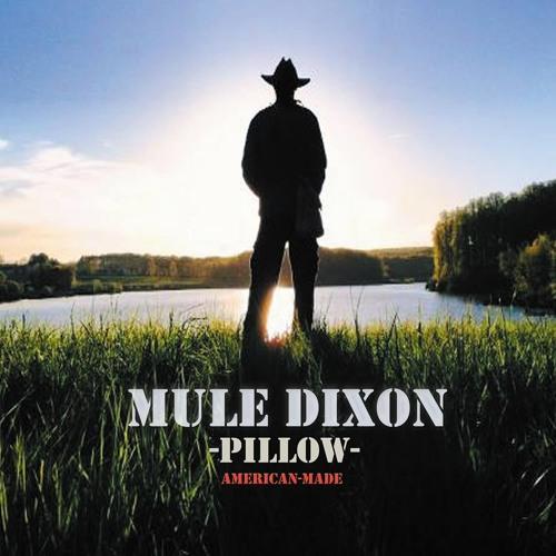 Mule Dixon - Pillow: American-Made