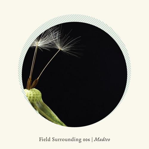 Field Surrounding 006 - Madteo