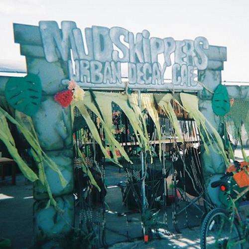 Burning Man 2013 Electro Pop & House Set