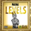 Meek Mill - Levels (Remake By. The Mechanic)