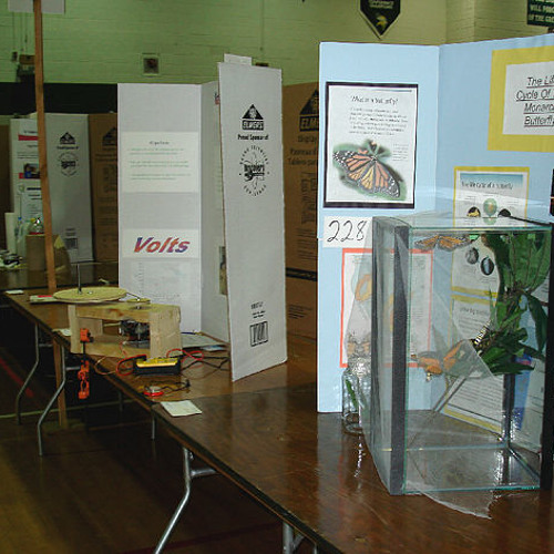 Remaking the Science Fair by Adam Hochberg