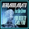 BERNARDO AMATO Feat. KEN STEVEN - YOU NEED TO CALL YOU -------------(Elettro Synth Mix)