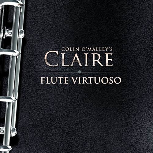 "8Dio Claire Flute Virtuoso: ""EWI Demo - Flute in the Dark"" by Steve Tavaglione"
