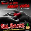 SE EU SÓ QUIS AMAR VOCÊ ( Banda Sul Brass 2013 )
