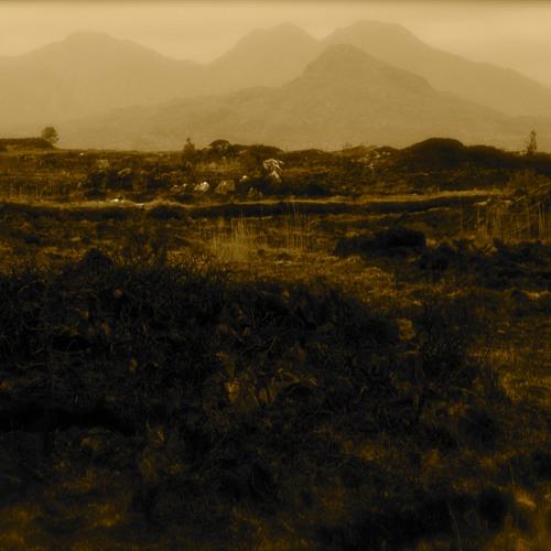 Wasteland (feat. M. Stokes)