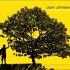 Jack Johnson - Belle (Cover)