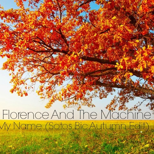 FairPlay VS Florence And The Machine - Bounce To My Name (Sotos Bic Autumn Edit)