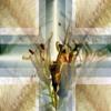 Download ...... digitalitar - march past -    Хиты зимы 2015