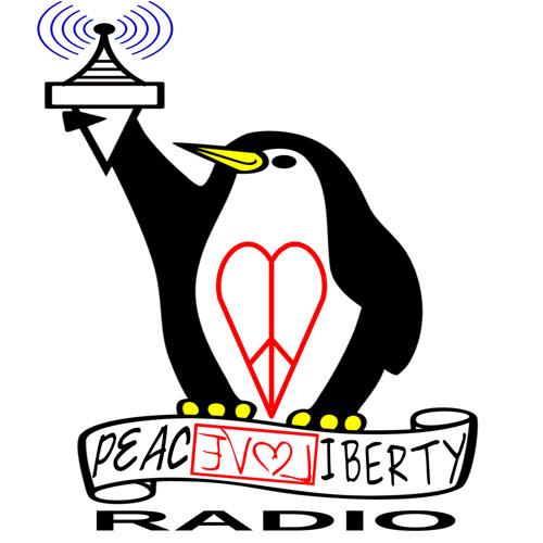PLL Radio 47