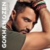 Gokhan Ozen. Seni Seviyorum mp3