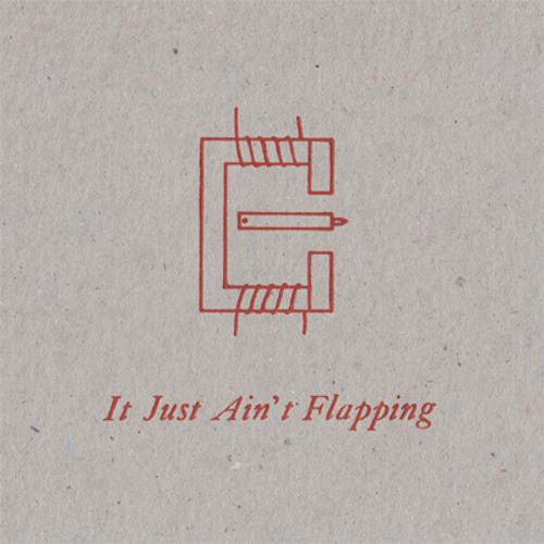 VA AA LR - It Just Ain't Flapping (excerpt)