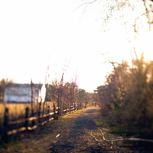 Tired Of Running Away
