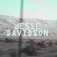 Jesse Davidson Flaws Artwork