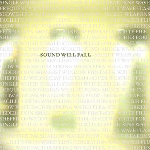 Geisterfahrer - SWF.VIII