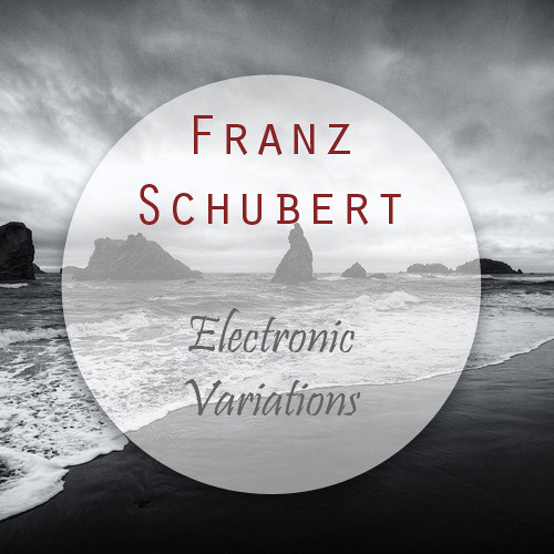 Franz Schubert - Electronic Variations (Original Mix) - Free DL