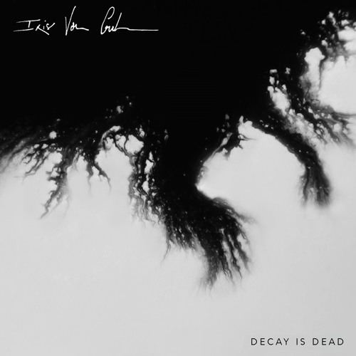 decay is dead ep