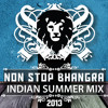 Non Stop Bhangra - Indian Summer Mix 2013 (DJ Jimmy Love)