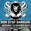 Non Stop Bhangra - Indian Summer Mix 2013 (DJ Jimmy Love)