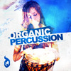 DGS38 Organic Percussion -  Sample Library - Exclusive at Loopmasters