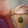 Trippy Turtle's Diplo & Friends Mix