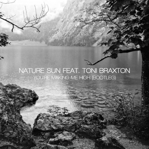 Nature Sun feat. Toni Braxton - You're Making Me High (Bootleg)