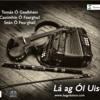 Tomas Ó Gealbháin & Caoimhín & Seán Ó Fearghail - The Rainy Day,Sword in Hand, Toss the Feathers