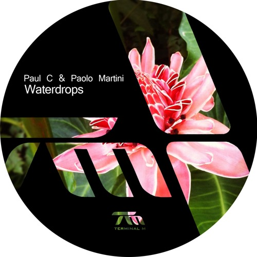 Paul C & Paolo Martini - The Race feat. Mousse T.
