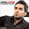 Amin Habibi - Nemitoonam