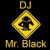 Hit Mix 2013