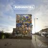 Rudimental - Not Giving In (Album Sampler)