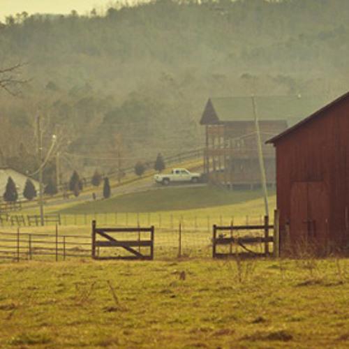 Tennessee Sundays