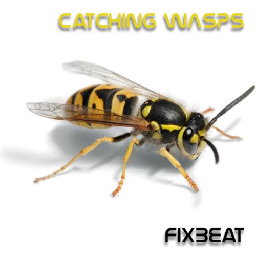 Catching Wasps - FixBeat