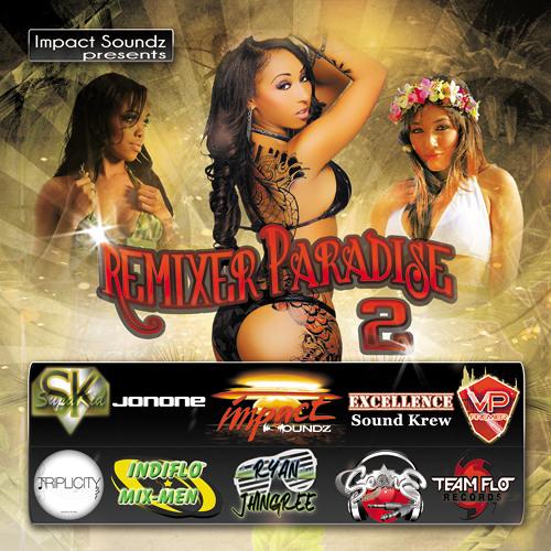 Remixer Paradise 2 - Vp Premier - It's A Pity Dubstep Remix