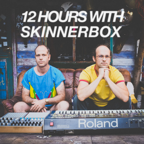 skinnerbox - 12 HOUR LIVE SET at KATERHOLZIG, 2013