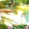 El Brillo de tus Ojos - ETHNIA